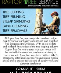 Raptor Tree Services