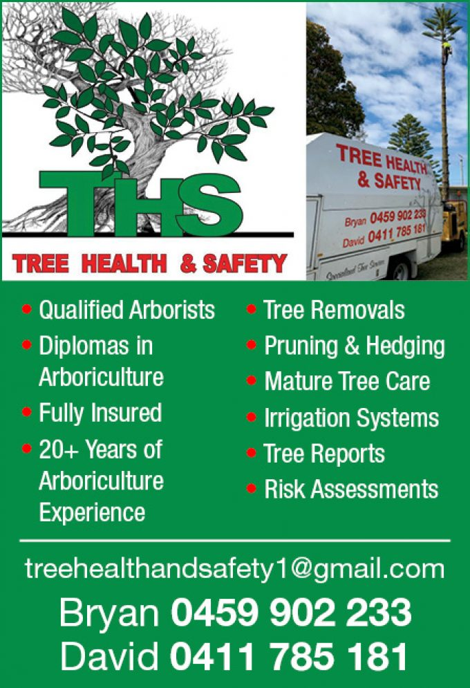 Tree Health & Safety