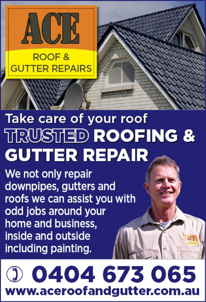 Ace Roof & Gutter Repair