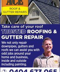 Ace Roof & Gutter Repair