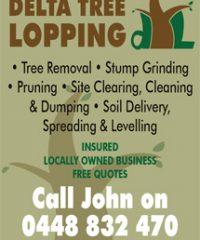 Delta Tree Lopping & Demolition
