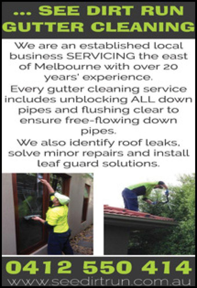 See Dirt Run Gutter Cleaning