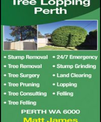 Tree Lopping Perth