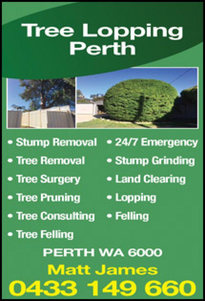 Tree Lopping Perth